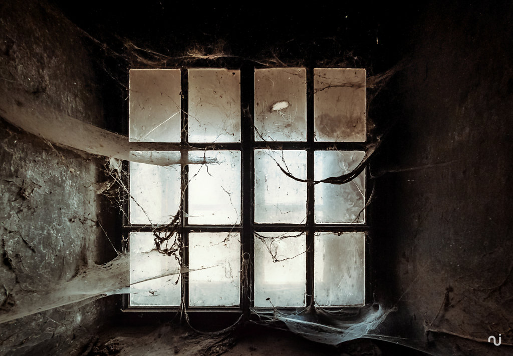 windows-020.jpg